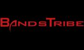 logo webzine bandstribe